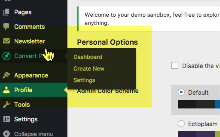 Setting Up the Convert Pro Sandbox 4